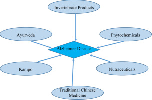 Alzheimer Disease: Clues from traditional and complementary