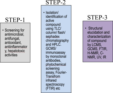 Herbal remedies for liver fibrosis: A review on the mode of action