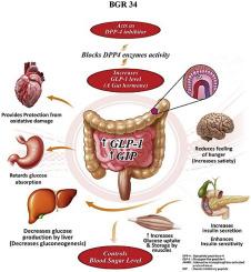 bgr 34 tableta ayurvédica para diabetes