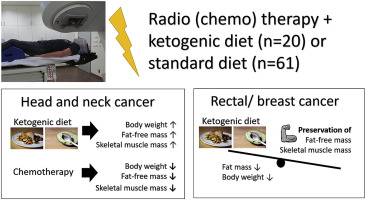 A Ketogenic Diet Exerts Beneficial Effects On Body Composition Of Cancer Patients During Radiotherapy An Interim Analysis Of The Ketocomp Study Sciencedirect