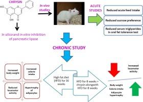 白杨减轻肥胖通过调节能量摄入和支出大鼠
