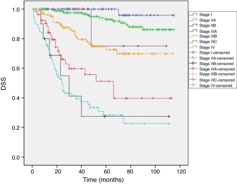 Assessment Of Prognosis In Patients With Stage Ii Colon Cancer Sciencedirect