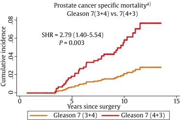 Adenocarcinoma de próstata de Gleason 3 4 7 3