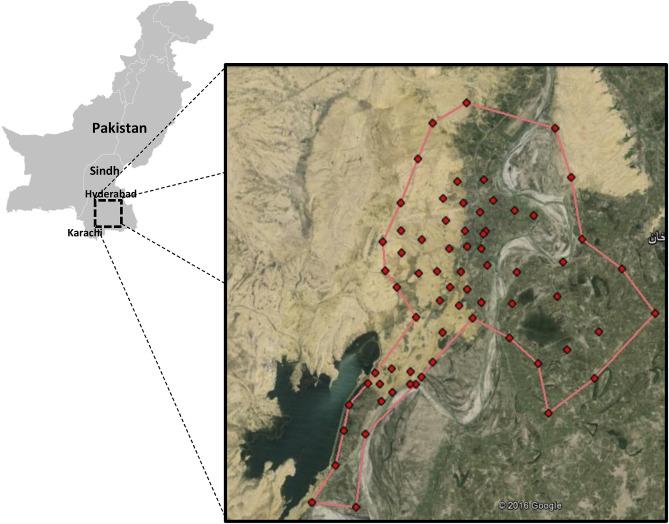 Integrated 3D geological modeling of Sonda-Jherruck coal field