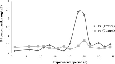 Effect of clomiphene citrate and human chorionic
