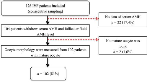 Serum AMH level predicts oocytes quality better than follicular