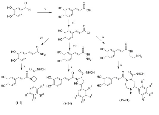 Synthesis and evaluation of a series of caffeic acid derivatives as