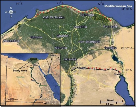 Vegetation Structure And Soil Characteristics Of Five Common - Vegetation map of egypt