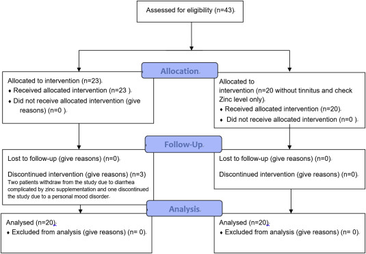 Effects of oral zinc supplementation on patients with noise