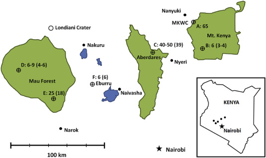 Relatedness and genetic variation in wild and captive populations of