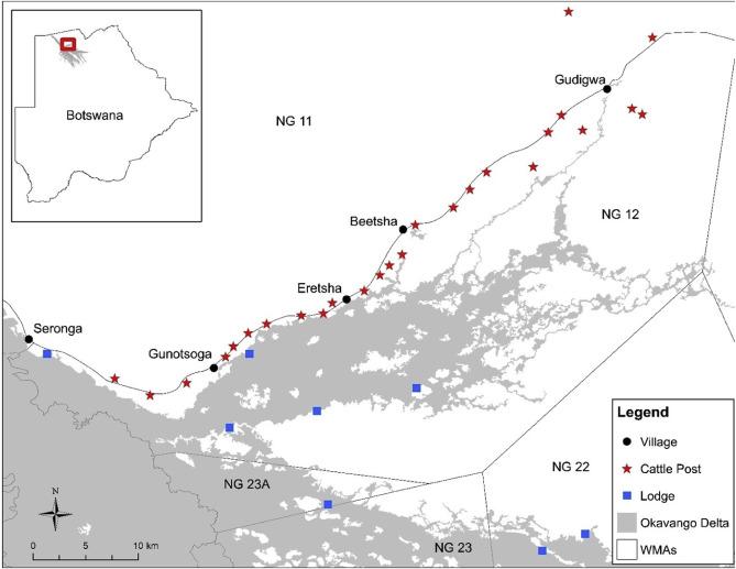 Livestock depredation by large carnivores in northern