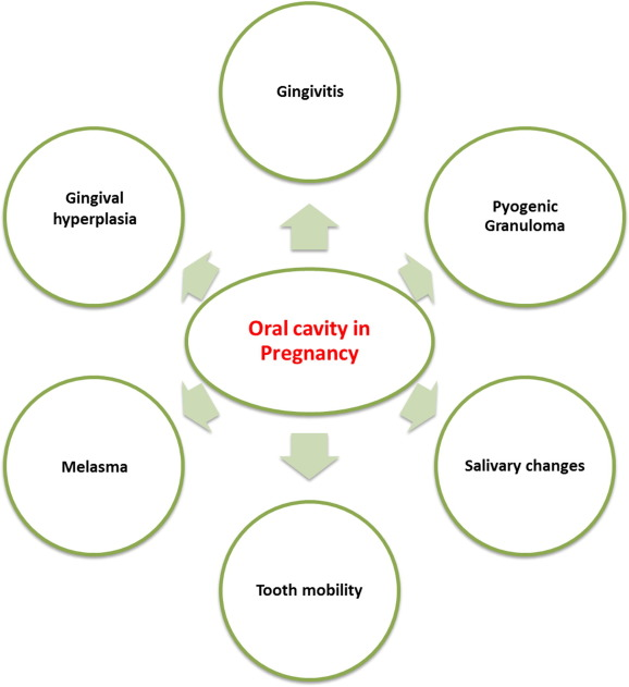 Oral Health Challenges In Pregnant Women Recommendations For Dental