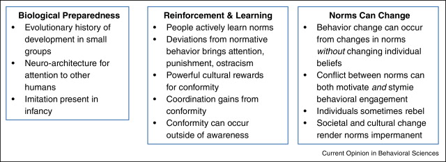 social norms influence behavior