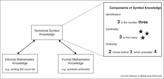 Why Numerical Symbols Count In The Development Of Mathematical