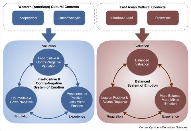 Cultural variation in pro-positive versus balanced systems