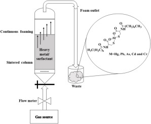 Removal of heavy metal ions from water using ion flotation