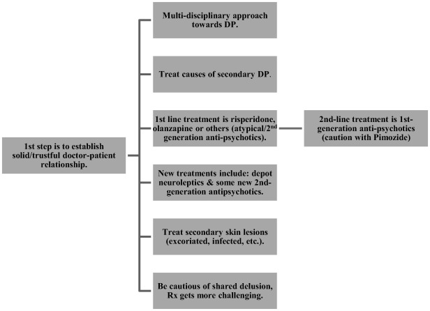 A systematic literature review on delusional parasitosis - ScienceDirect