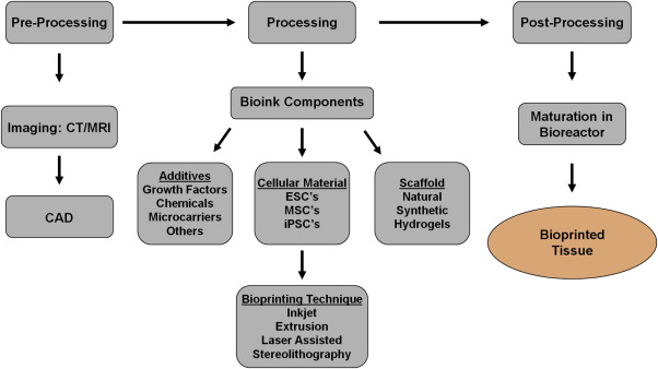 3-D bioprinting technologies in tissue engineering and regenerative