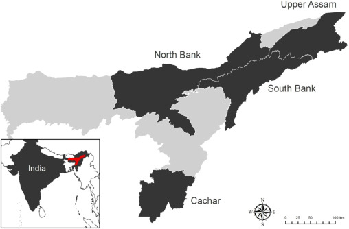 Tea production characteristics of tea growers (plantations and