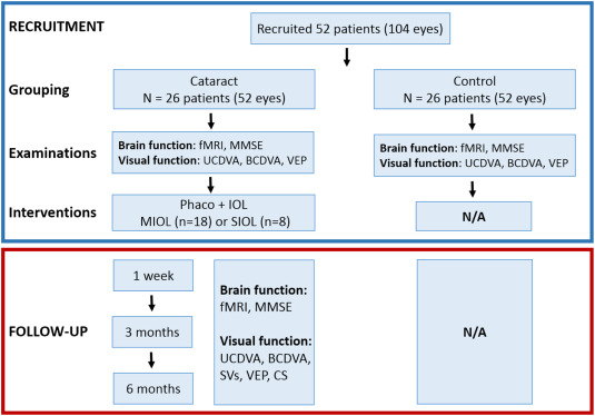 Visual Restoration After Cataract Surgery Promotes