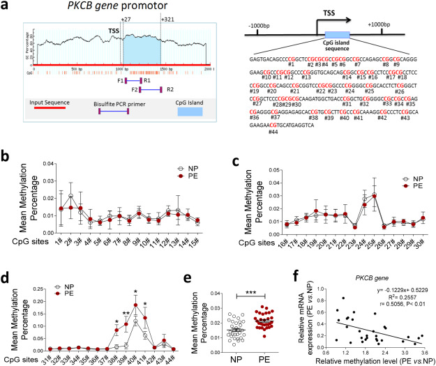 Hyper-methylation of AVPR1A and PKCΒ gene associated with