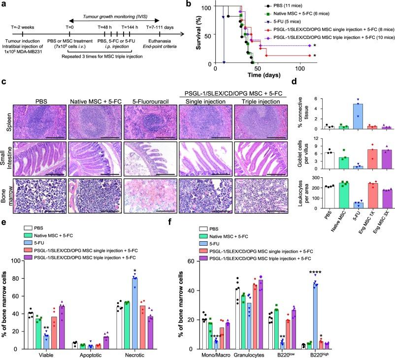 Combinatorial targeting of cancer bone metastasis using mRNA