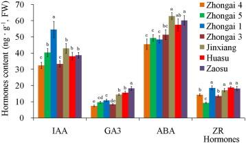 An RNA-Seq analysis of the pear (Pyrus communis L