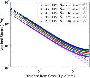 Crack tip stress based kinetic fracture model of a PVA dual