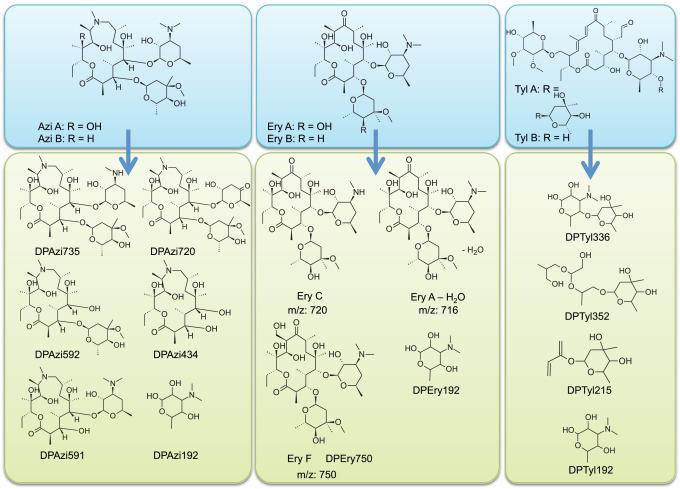 will plaquenil affect drug test
