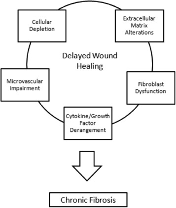 Impaired Wound Healing After Radiation Therapy A Systematic Review Of Pathogenesis And Treatment Sciencedirect