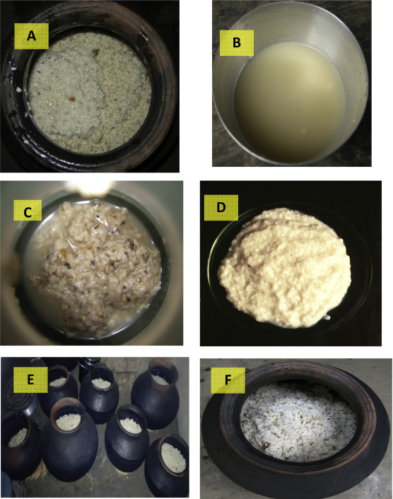 Folk to functional: An explorative overview of rice-based