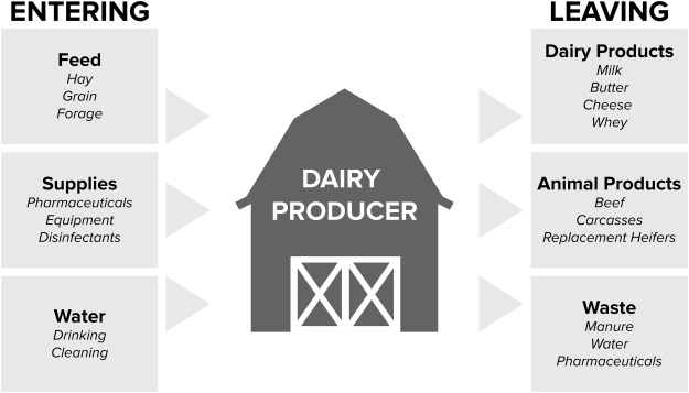 A one health perspective on dairy production and dairy food safety