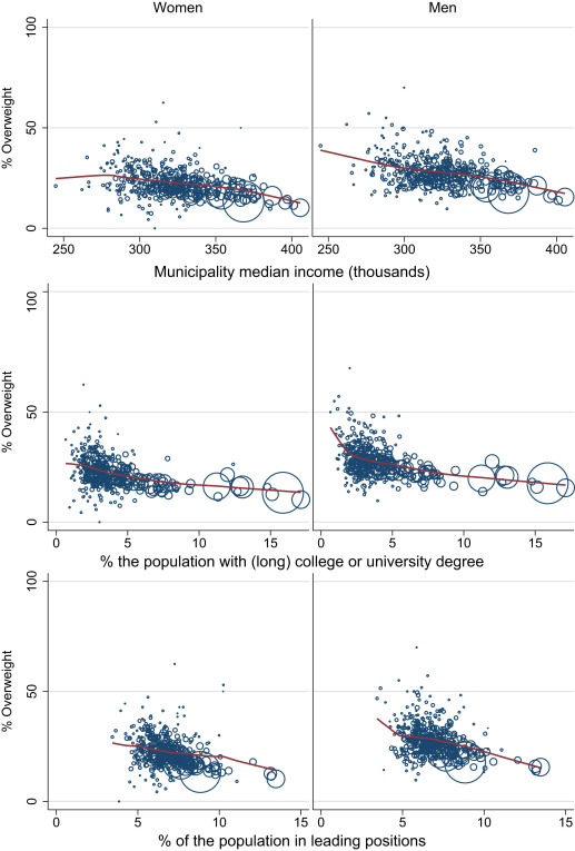 socio economic factors affecting obesity