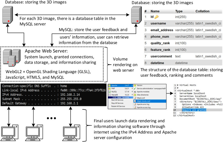 Web-based medical data visualization and information sharing towards