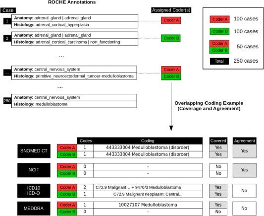 hodgkin s sarcoma icd 10 code for diabetes