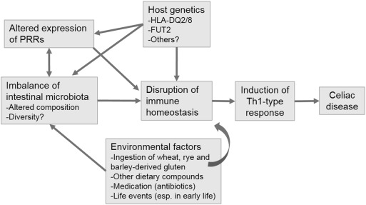 microbiota in early life and risk of celiac disease