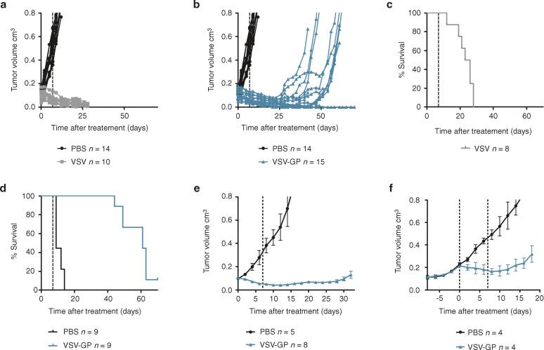 ovarian cancer xenografts mice
