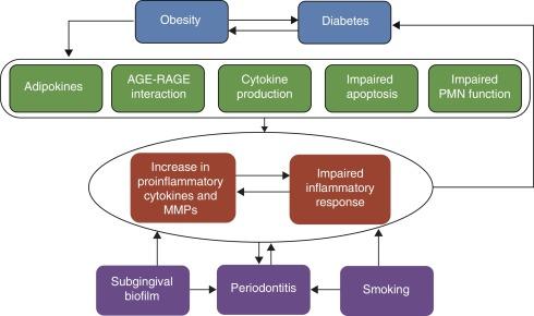 agnimantha obesidad y diabetes