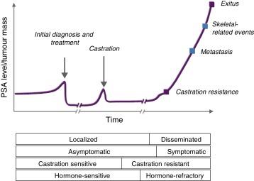 cáncer de próstata orsolas