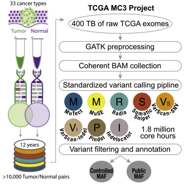 Scalable Open Science Approach for Mutation Calling of Tumor