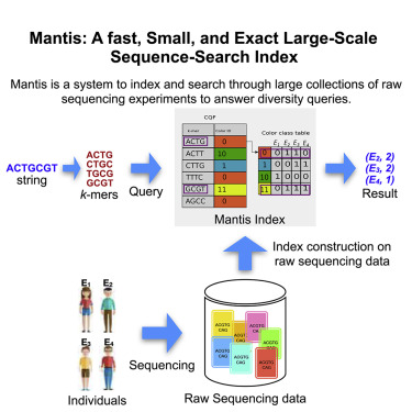 Mantis A Fast Small And Exact Large Scale Sequence Search Index Sciencedirect