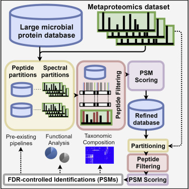 ProteoStorm: An Ultrafast Metaproteomics Database Search
