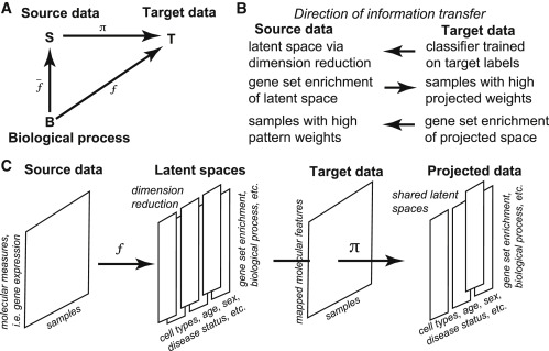 Decomposing Cell Identity for Transfer Learning across