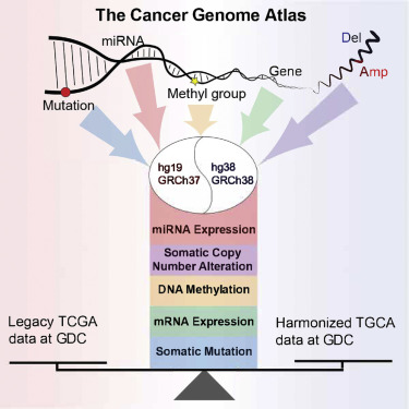 Before and After: Comparison of Legacy and Harmonized TCGA