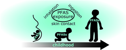 Early life exposure to per- and polyfluoroalkyl substances