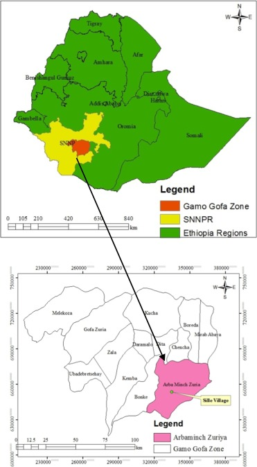 High entomological inoculation rate of malaria vectors in area of
