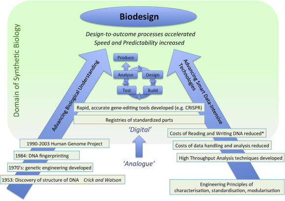 Synthetic biology in the UK – An outline of plans and