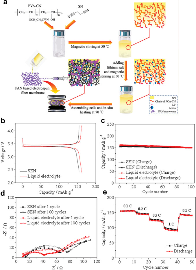 All solid-state polymer electrolytes for high-performance
