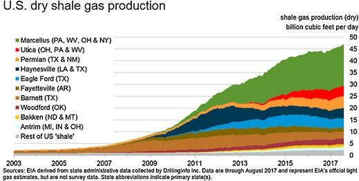 china investment us shale gas plays