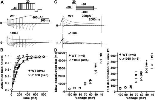 Molecular autopsy: using the discovery of a novel de novo pathogenic